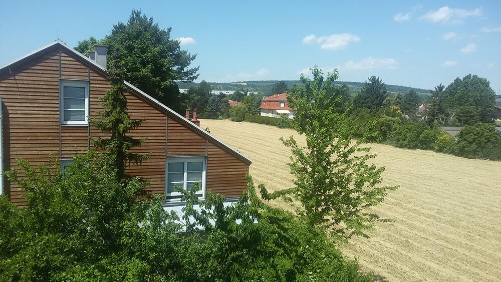Blick aus meinem Fenster
