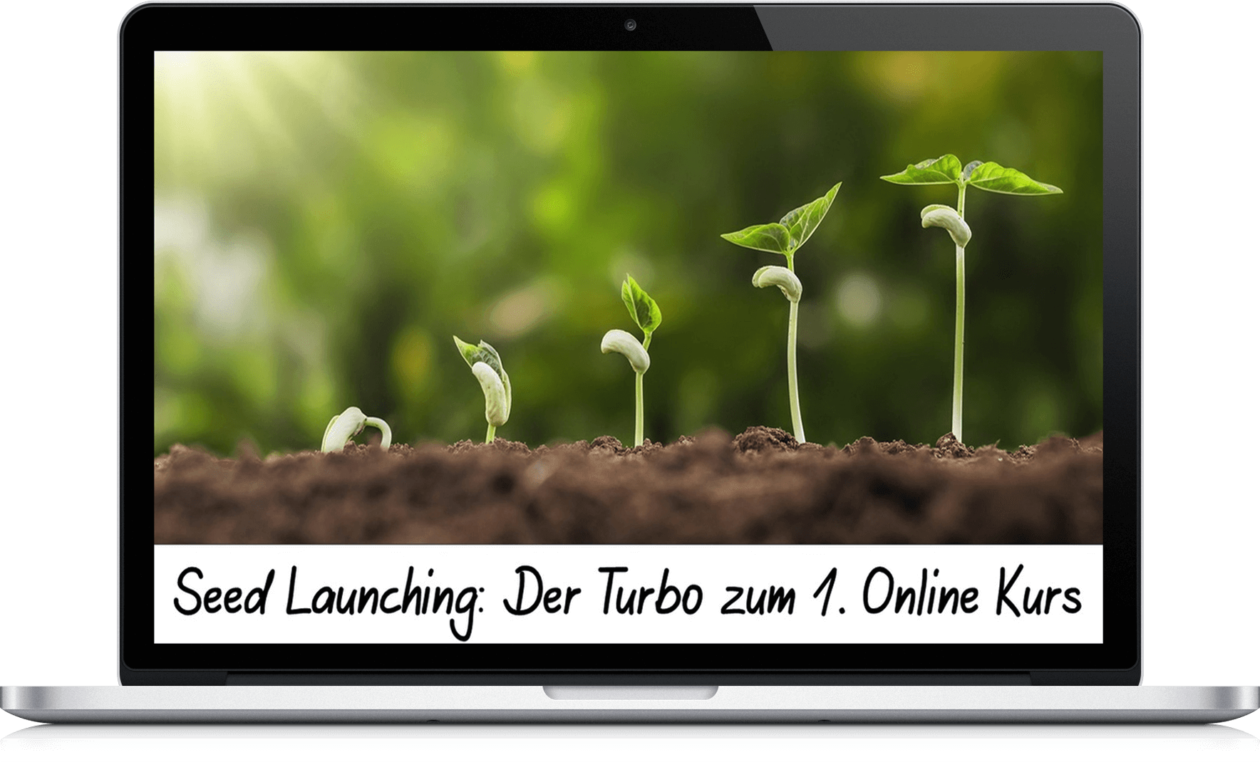 Seed Launching 3D